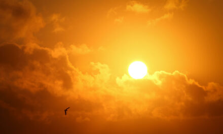 Heliophobia: Fear of Sun – Behaviors and Consequences