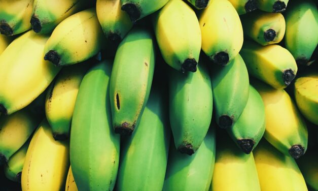 What is Bananaphobia and How to Cure the Fear of Bananas?