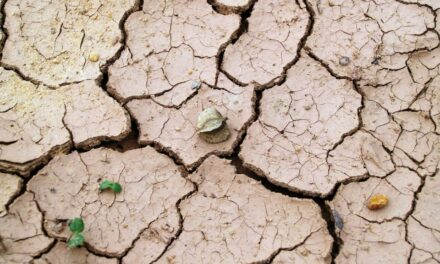 Xerophobia: Understanding Fear of Dryness or Dry Places